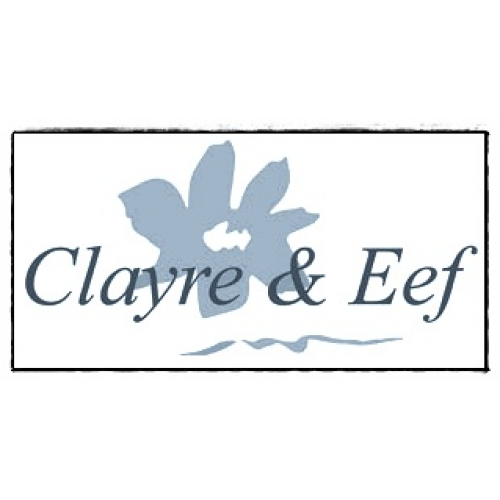 clayre eef haar elastiek zwart crystals op ornament vlinder. Black Bedroom Furniture Sets. Home Design Ideas