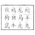 Chinese Astrologie